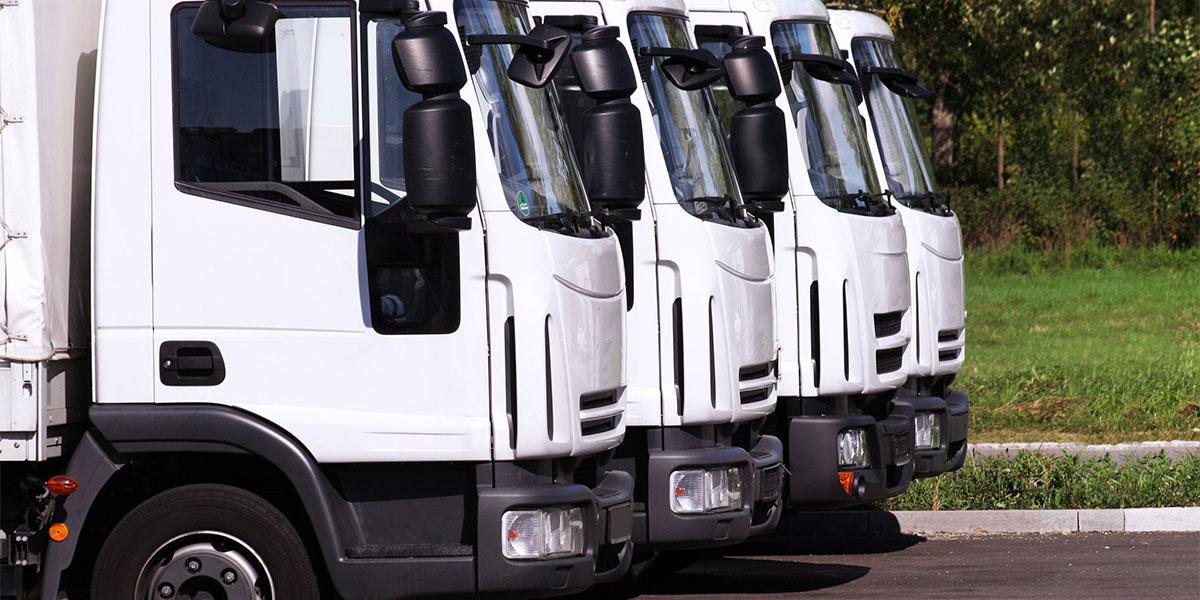 windshield maintenance for fleet vehicles