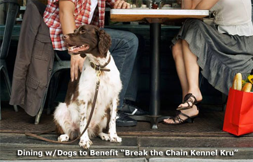 Greensboro Dining with Dogs