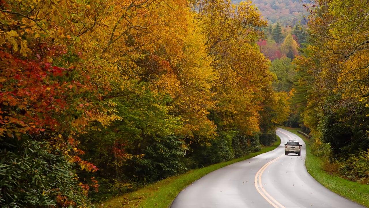 North Carolina Drives