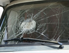 replace or repair windshield