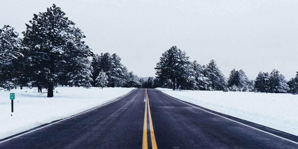 open road surrounded by snow and trees